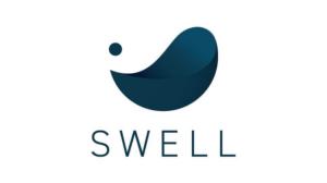 【SWELL】使い方 シンプルに使え おしゃれでSEOにも強いレスポンシブなサイトが制作可能